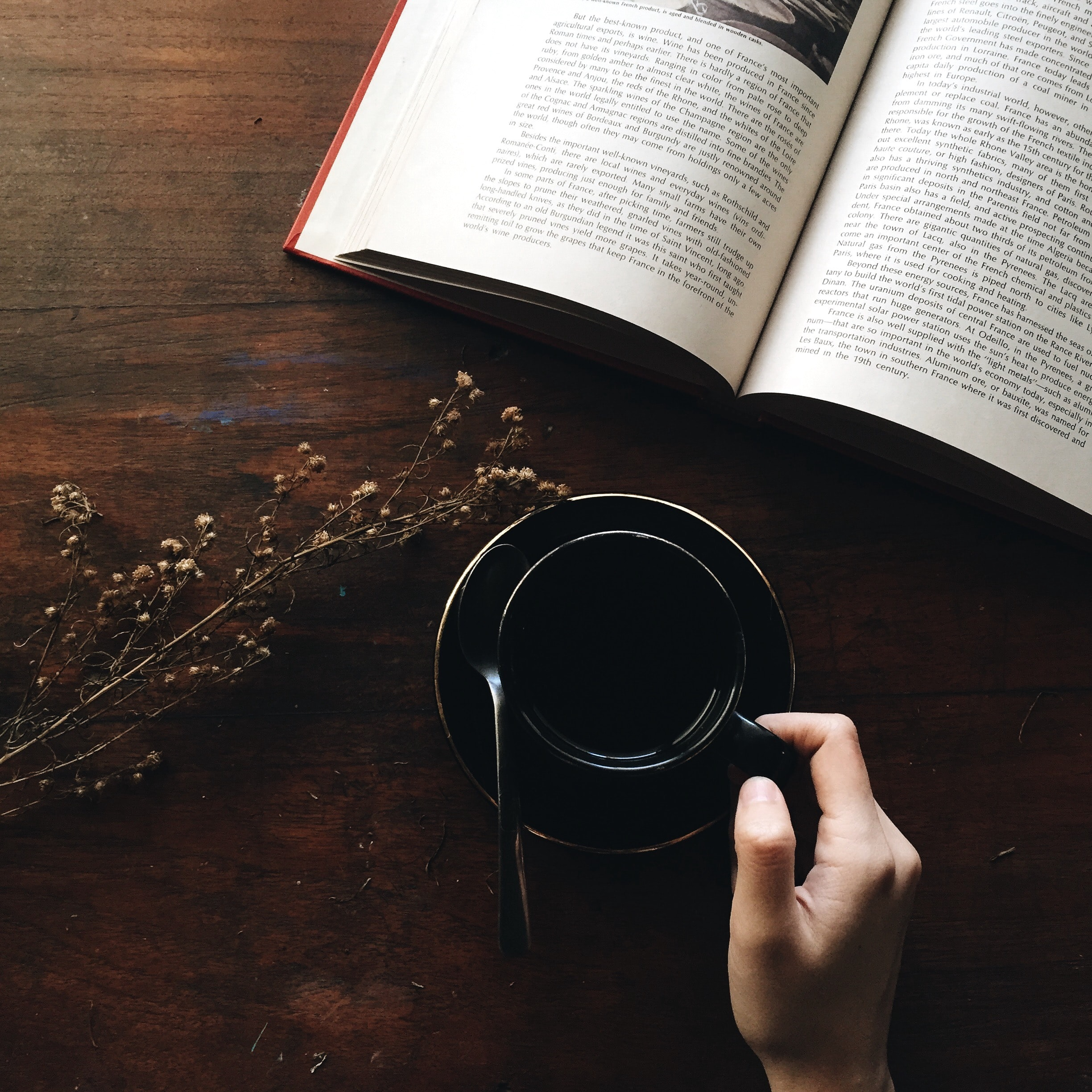 Photo Via: https://unsplash.com/photos/P_p4NGz5Cb4, person reading book with coffee.