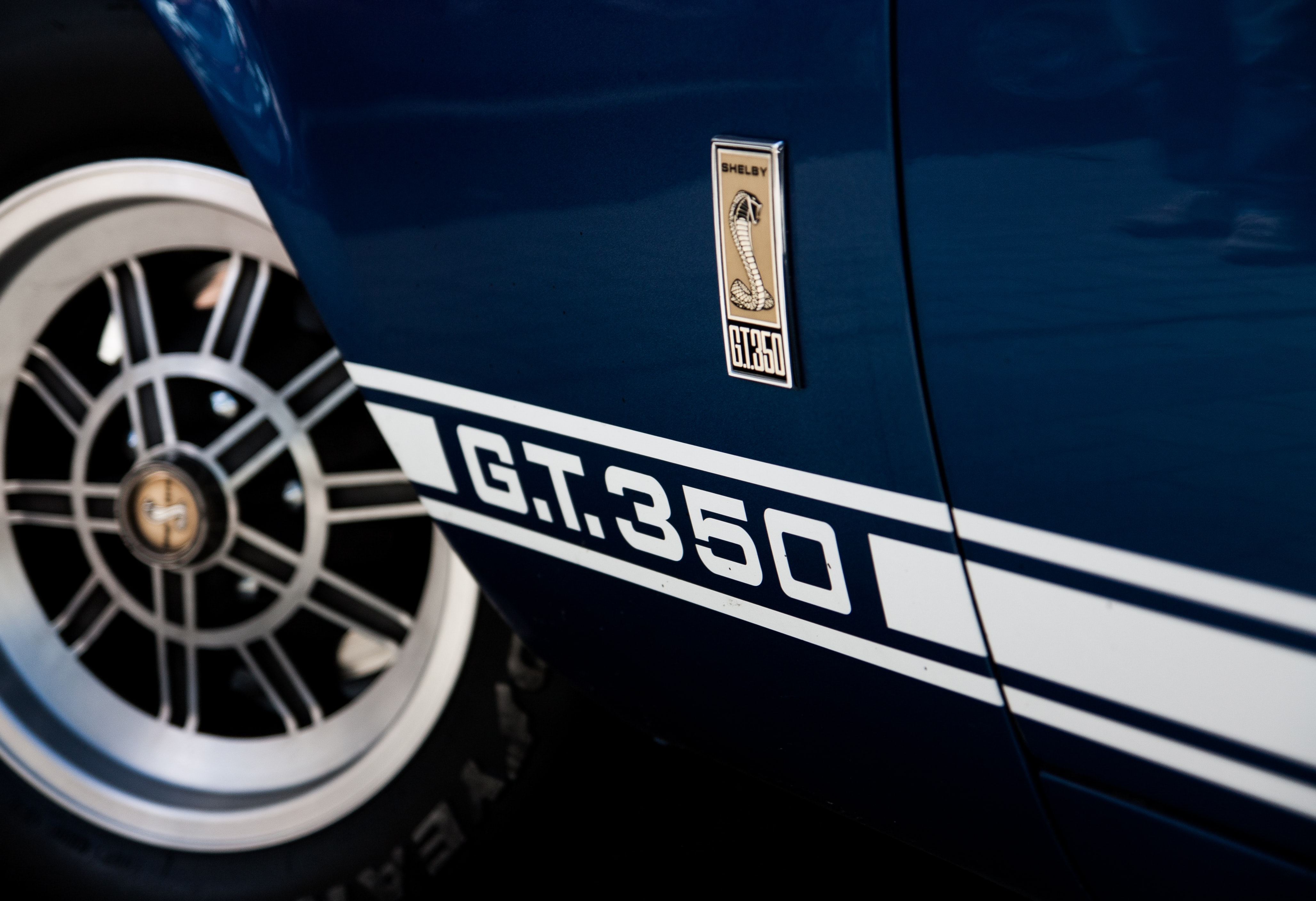 Details on a GT 350 Mustang sports car