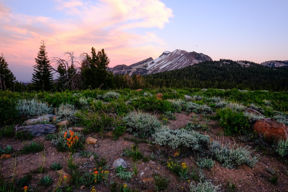 mountain range near green grass field