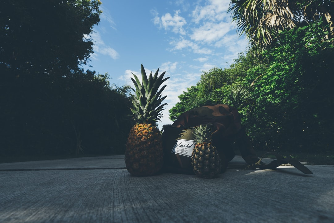 pineapples on path in mexico
