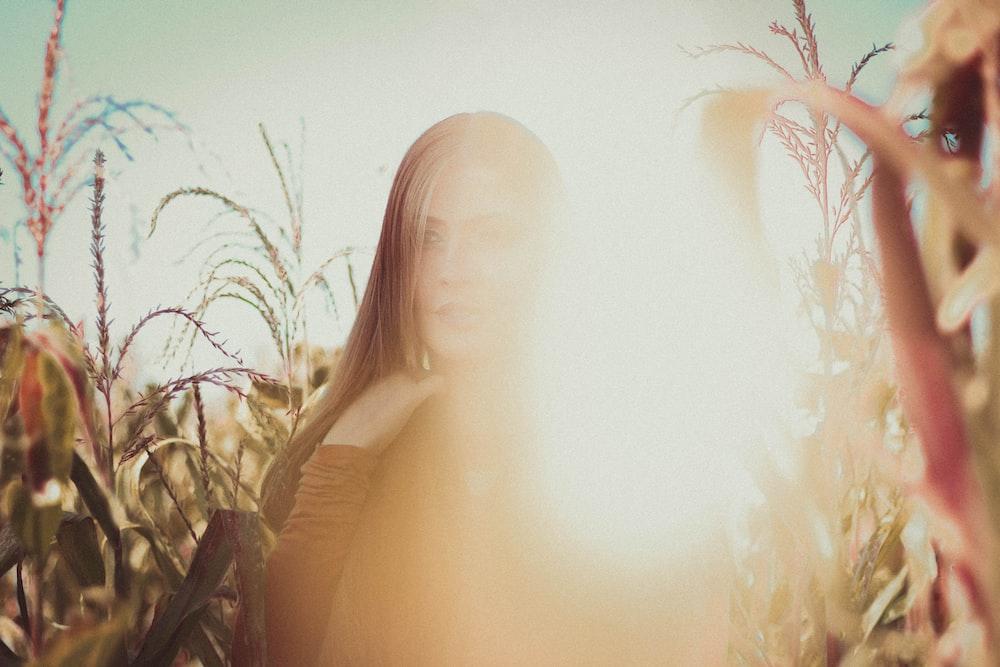 woman on corn field