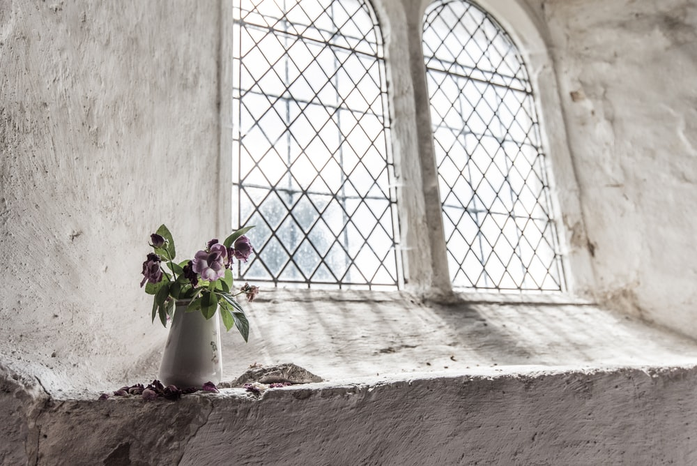 green and purple petal flowers on white vase near window