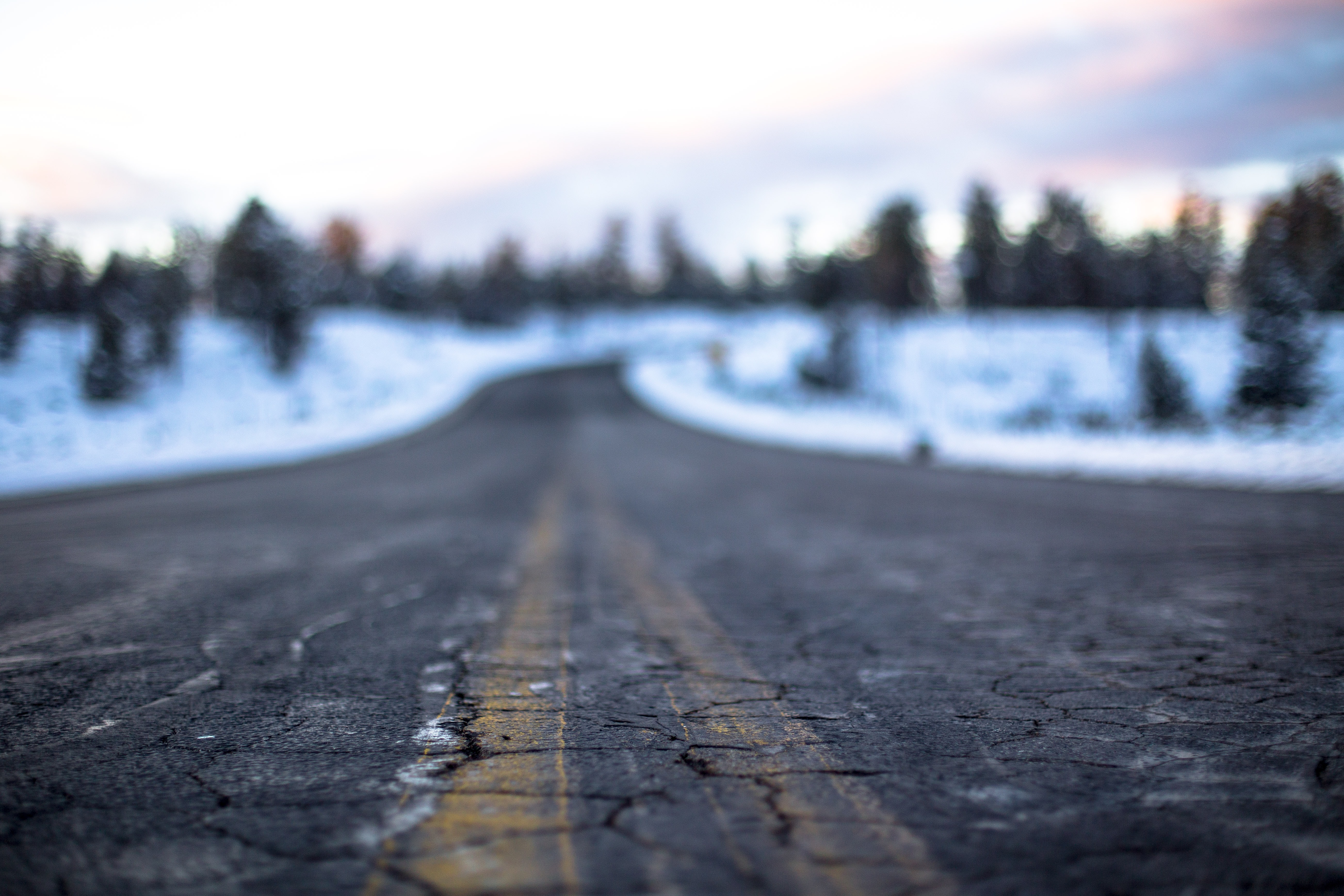 A cracked road in the Grand Canyon is passing a winter landscape with trees