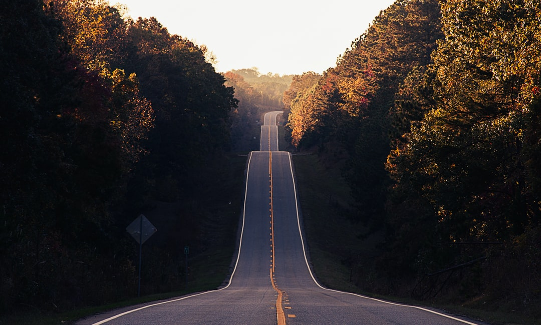 Highway 212 forest road