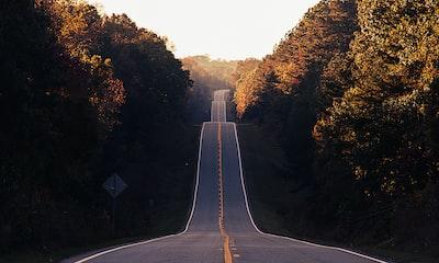 asphalt road between trees road zoom background