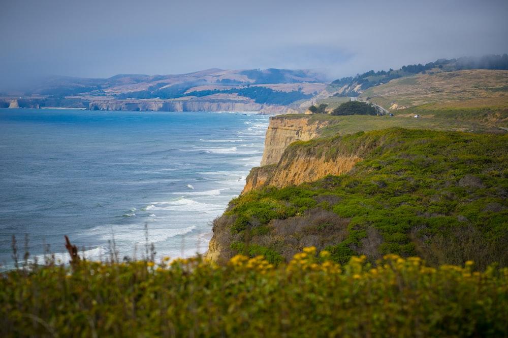 coastline with waving seas