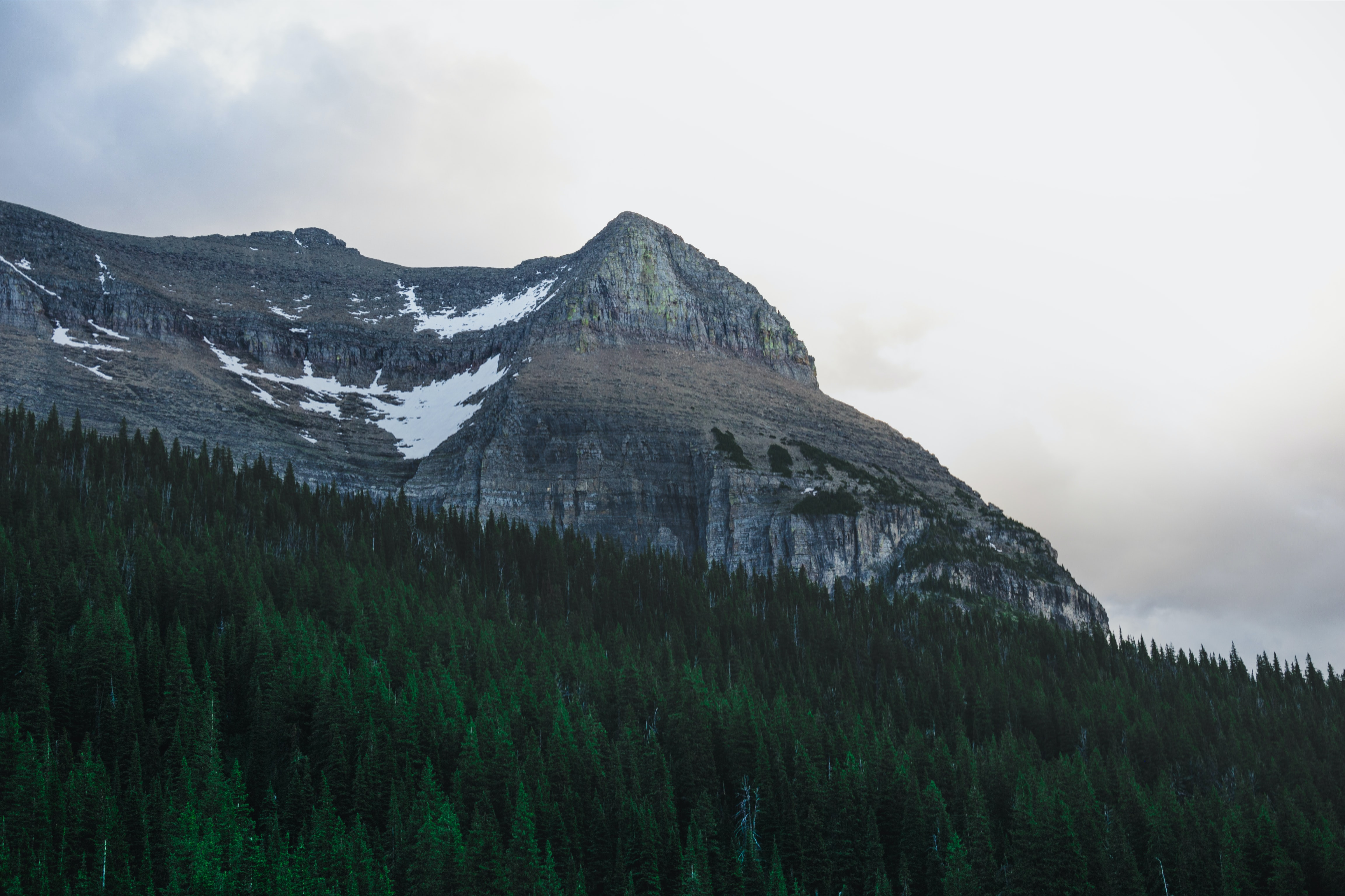 A flat mountain with patches of snow near an evergreen forest in Glacier National Park