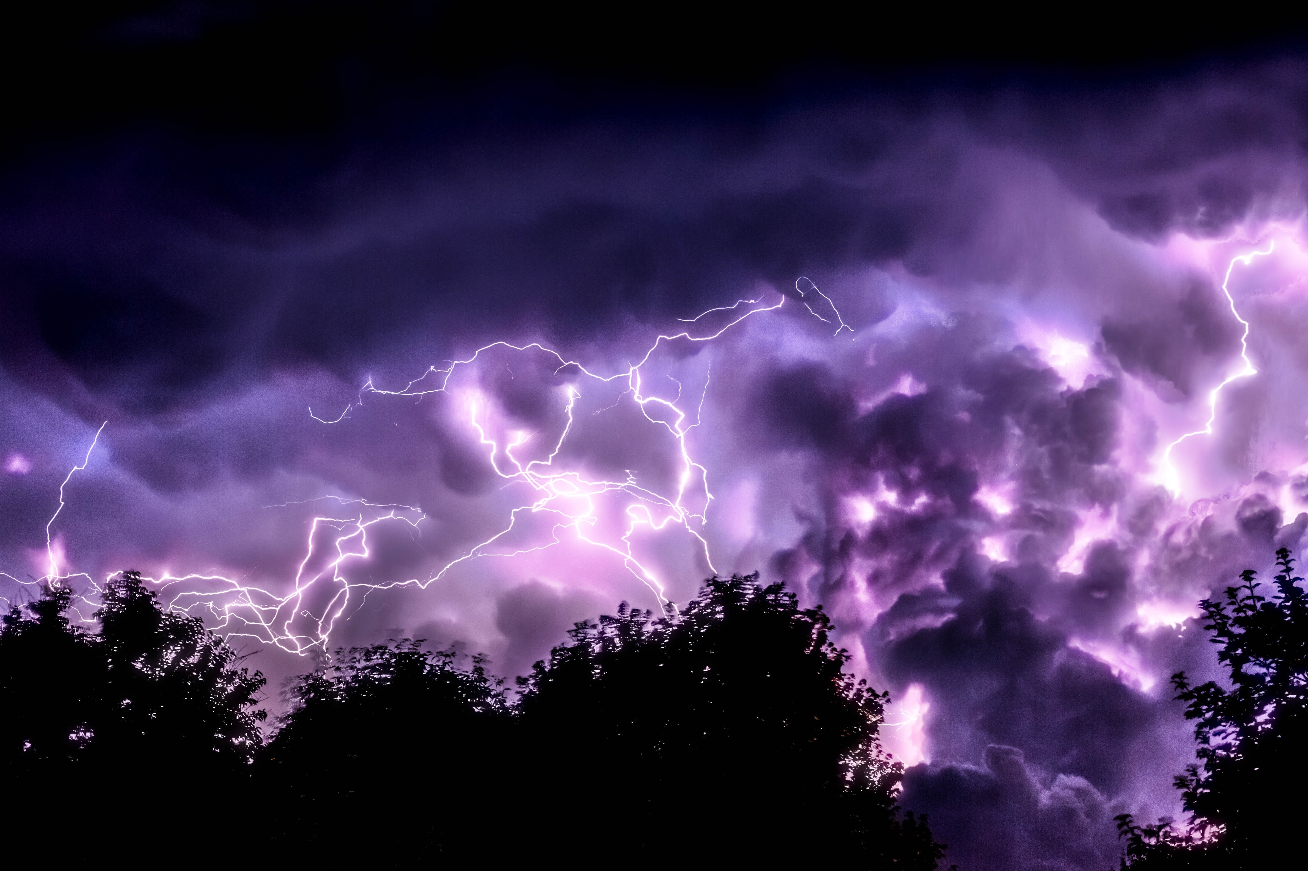 A view of purple lightning and thunder bolt in the sky with trees in silhouette