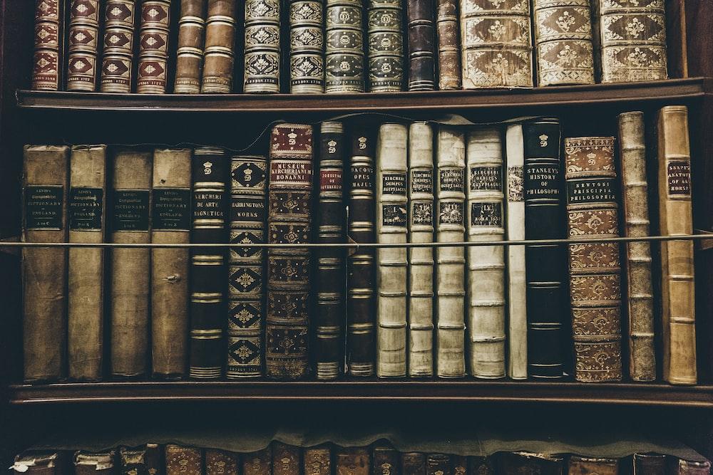 leatherbound books on book shelf