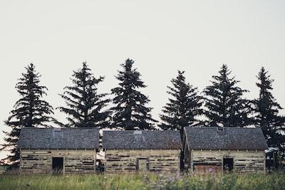 Three Hills sheds