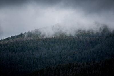 1210. Ködös tájakon