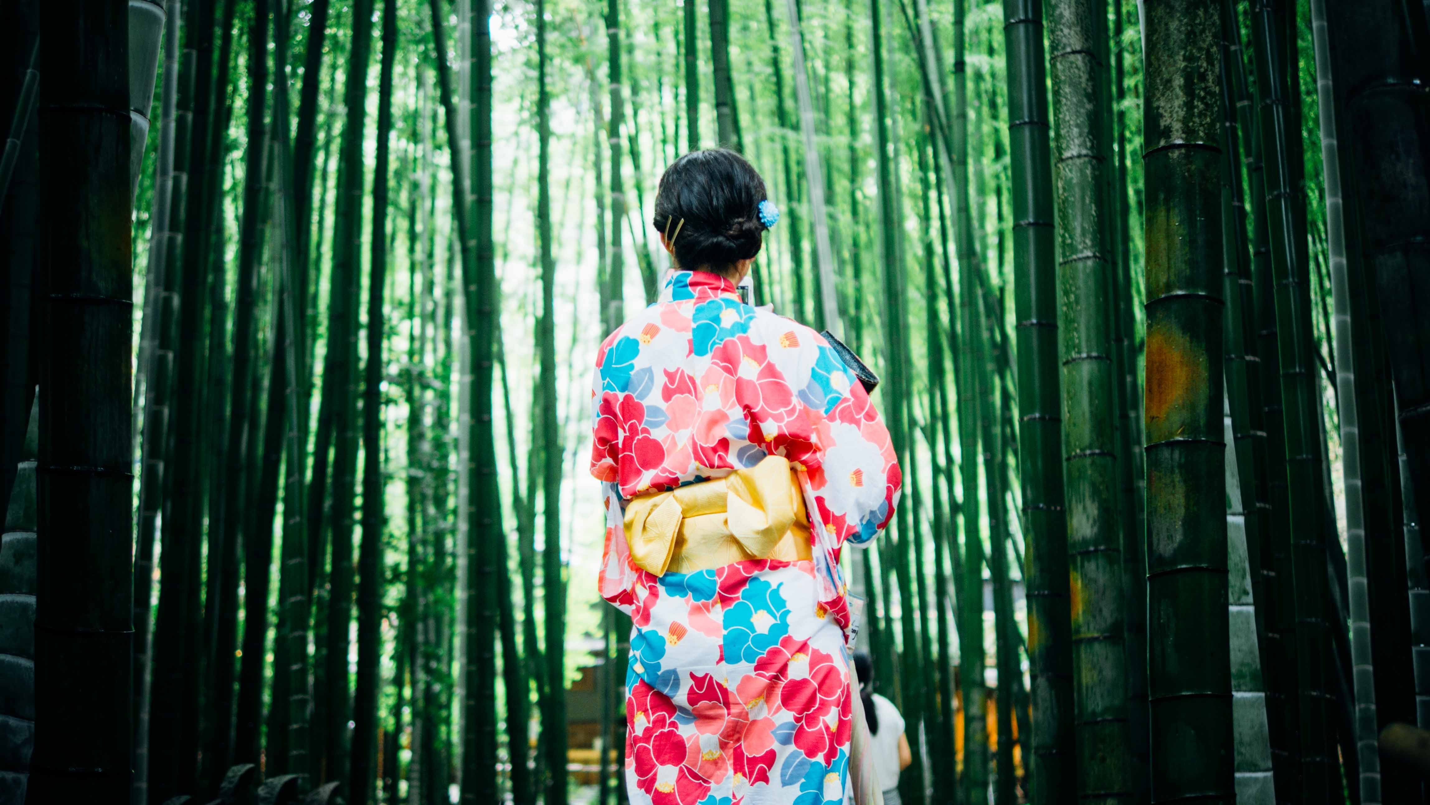 A woman in a colorful floral kimono walking between tall bamboo plants