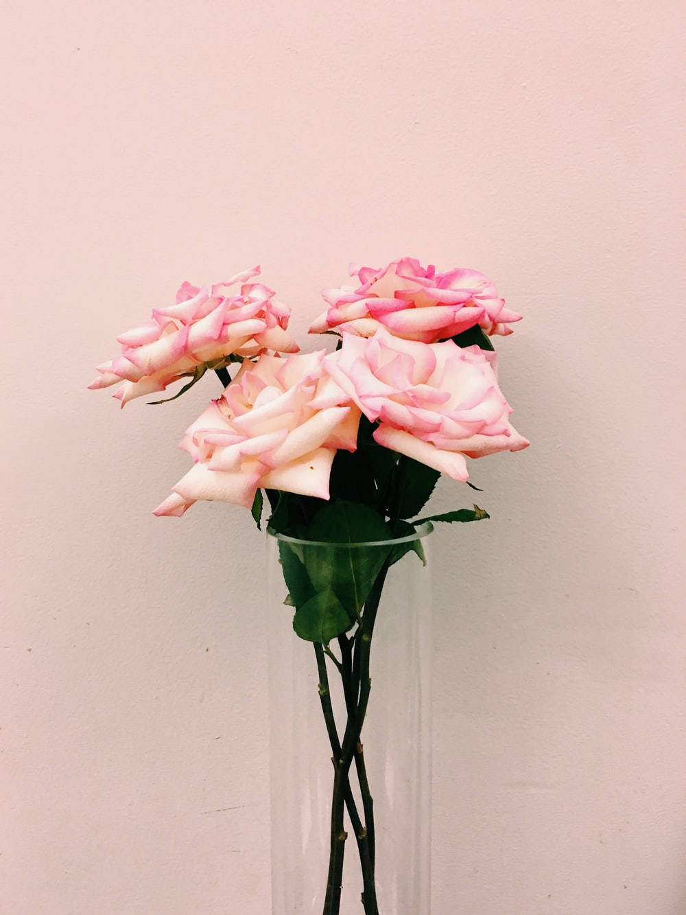 Pink White Flowers Photo By Jon Tyson Jontyson On Unsplash