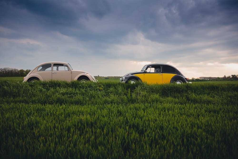 white and yellow Volkswagen Beetles on open ground
