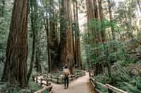 Trails trail stories