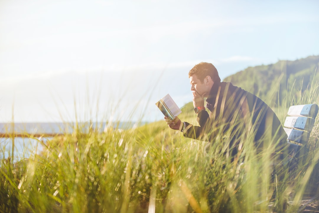 A man reading his book while sitting on a bench in a meadow