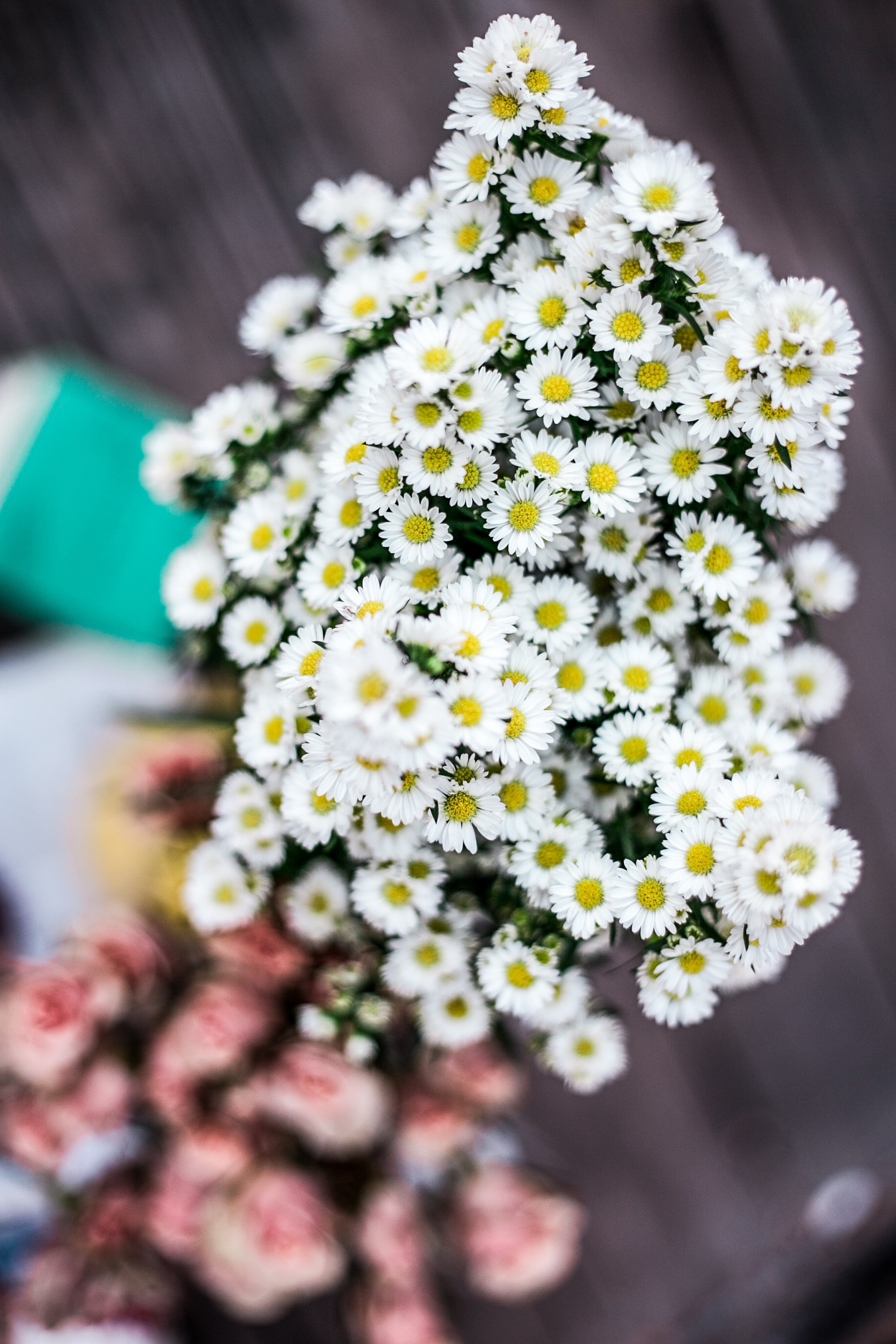 A top view of a bouquet of white daisies with another pink bouquet in the blurred background