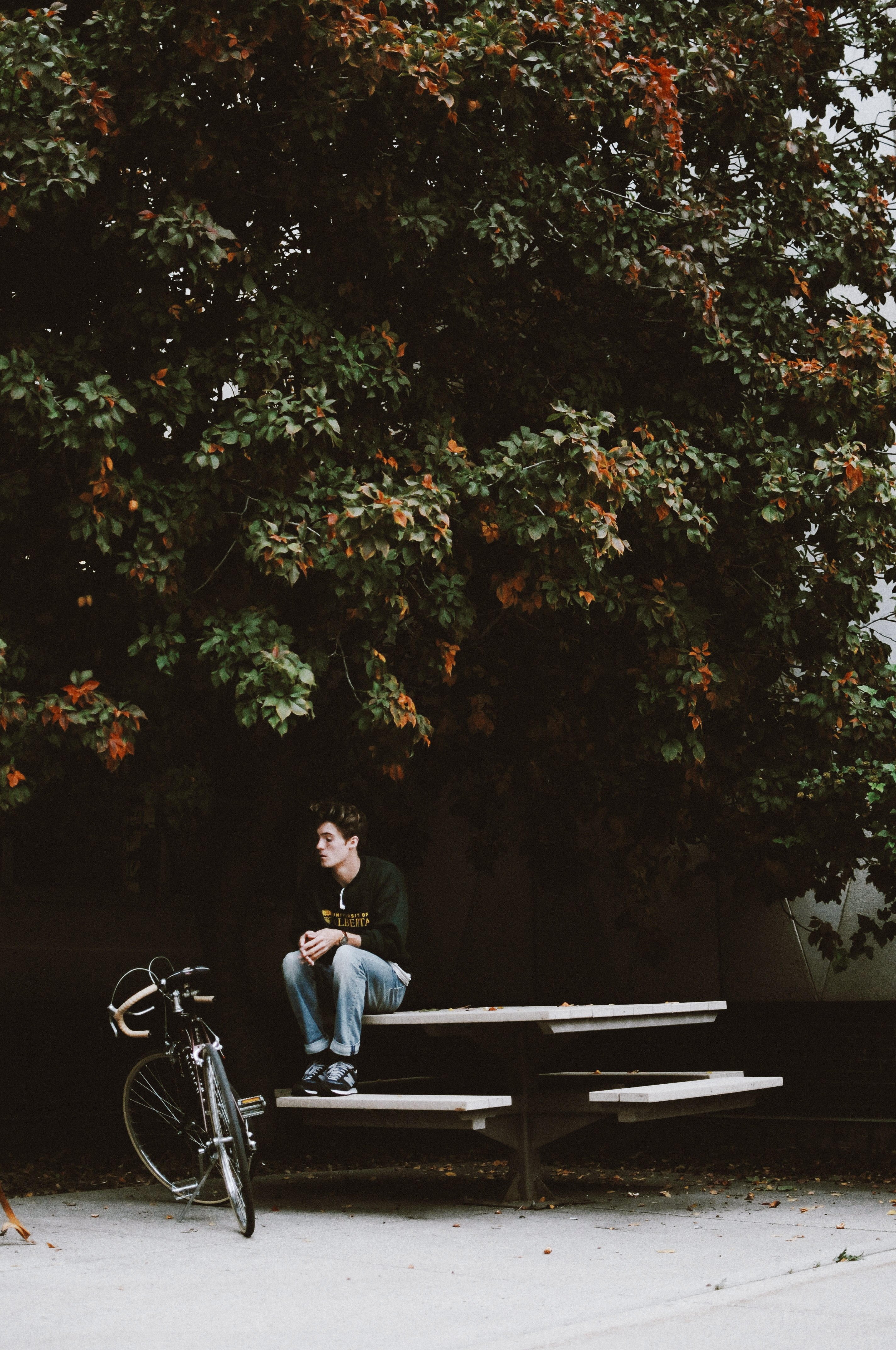 A person sitting on a picnic table next to his bicycle at the University of Alberta