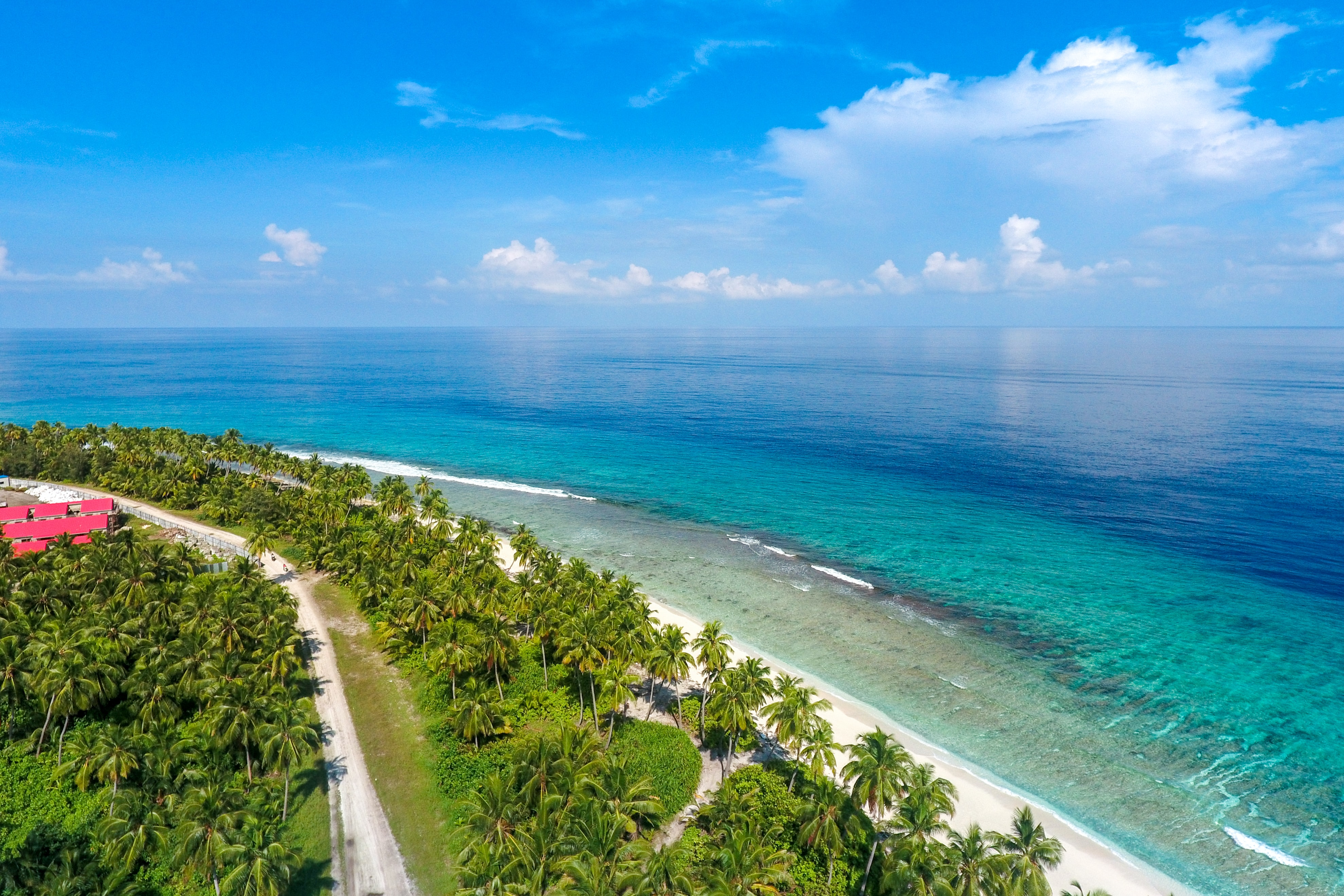 A high shot of an empty palm-fringed beach stretching along  the blue ocean on a sunny day