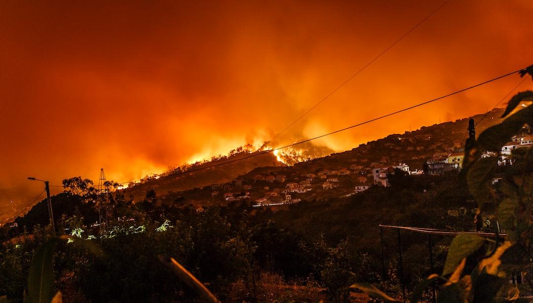 Amazonský prales v plamenech. Jak můžete pomoci?