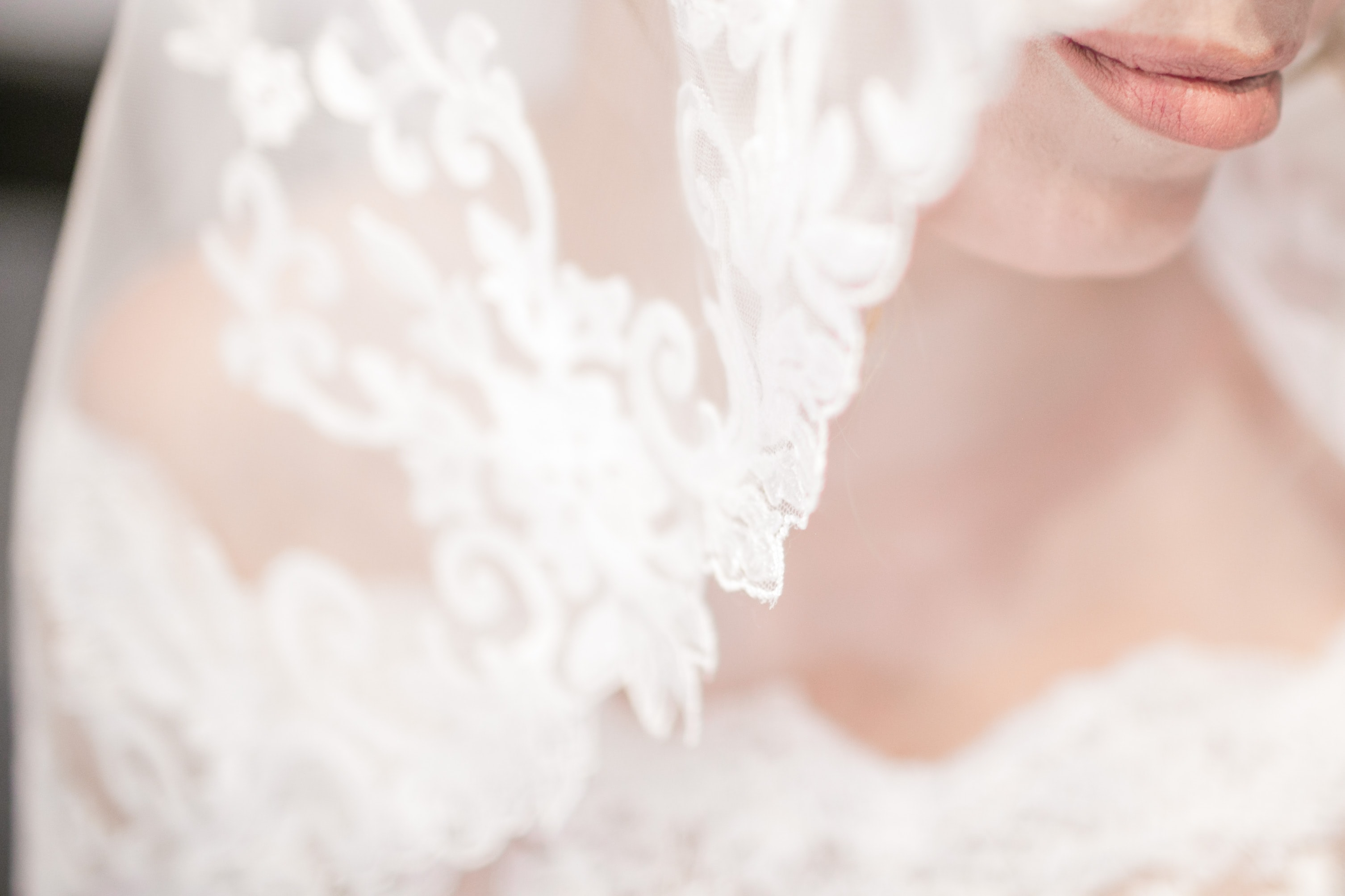 Bride's lace veil and nude lips along with her strapless wedding dress