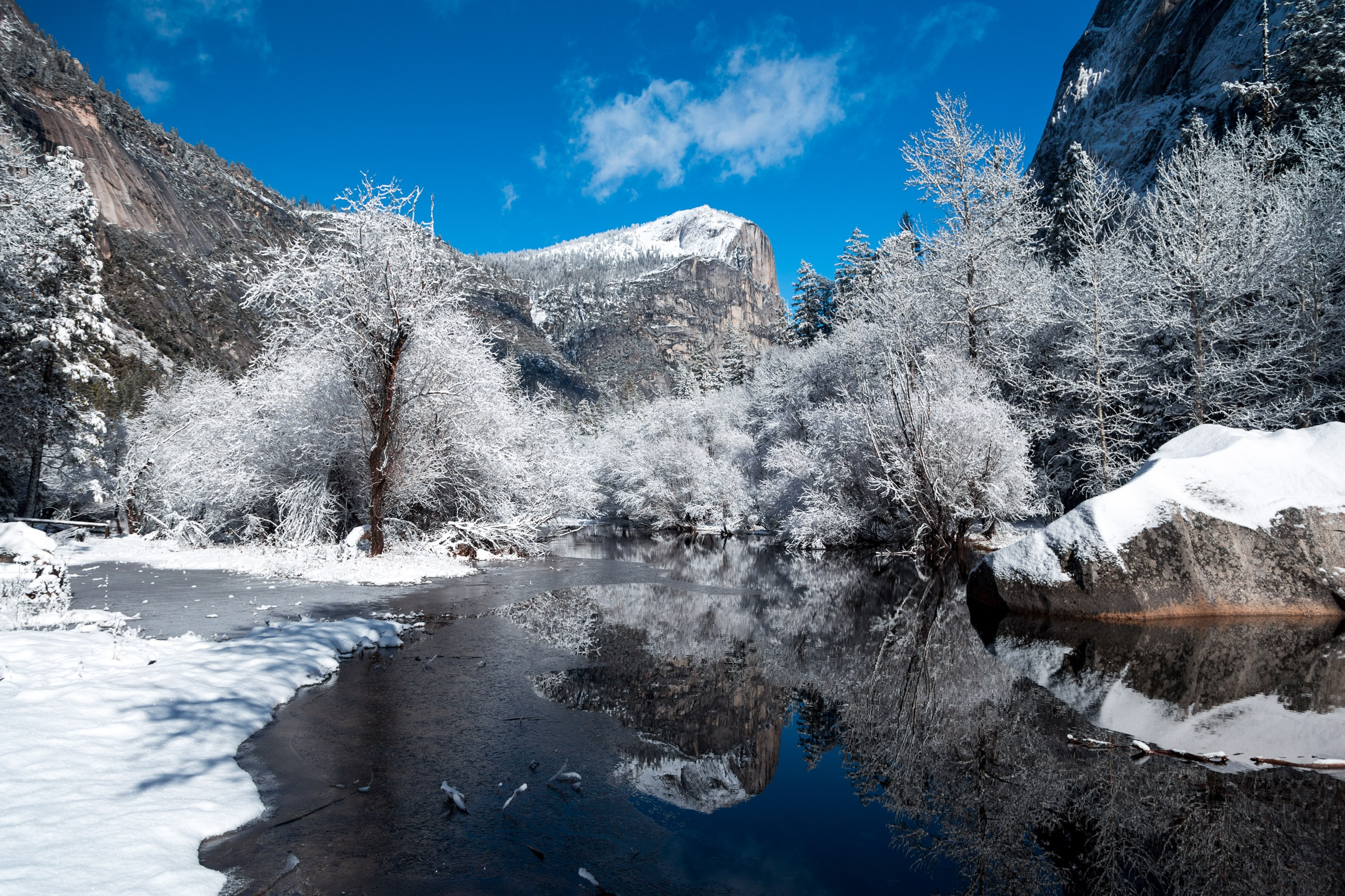 A melting stream in the mountains surrounded by snow-covered trees against a bright blue sky
