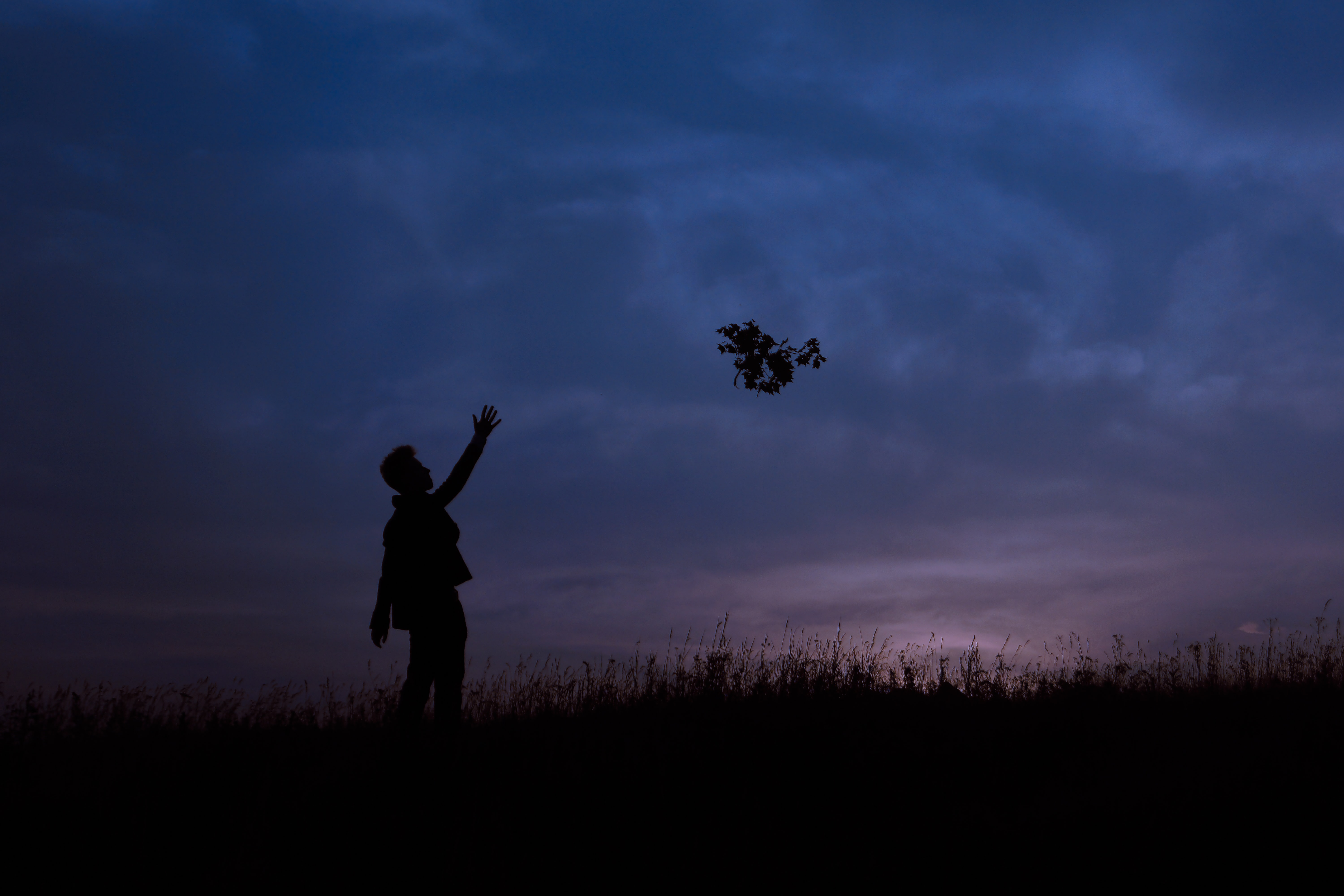 A silhouette of a person throwing a leafy branch in the air at dusk