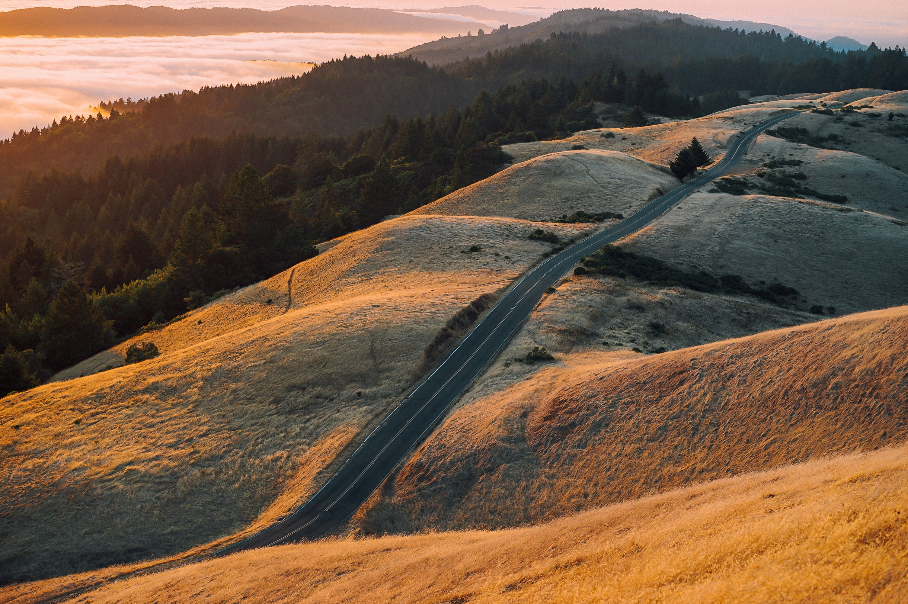 An empty country road stretching across grassy hills during sunset, forests and foggy valleys in the distance