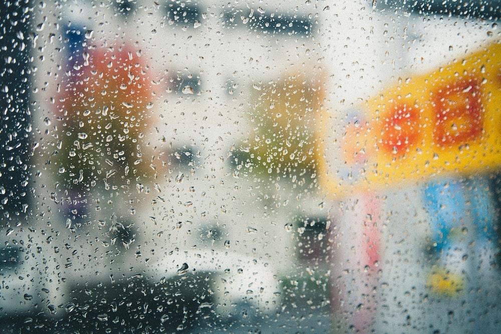 photography of rain drops