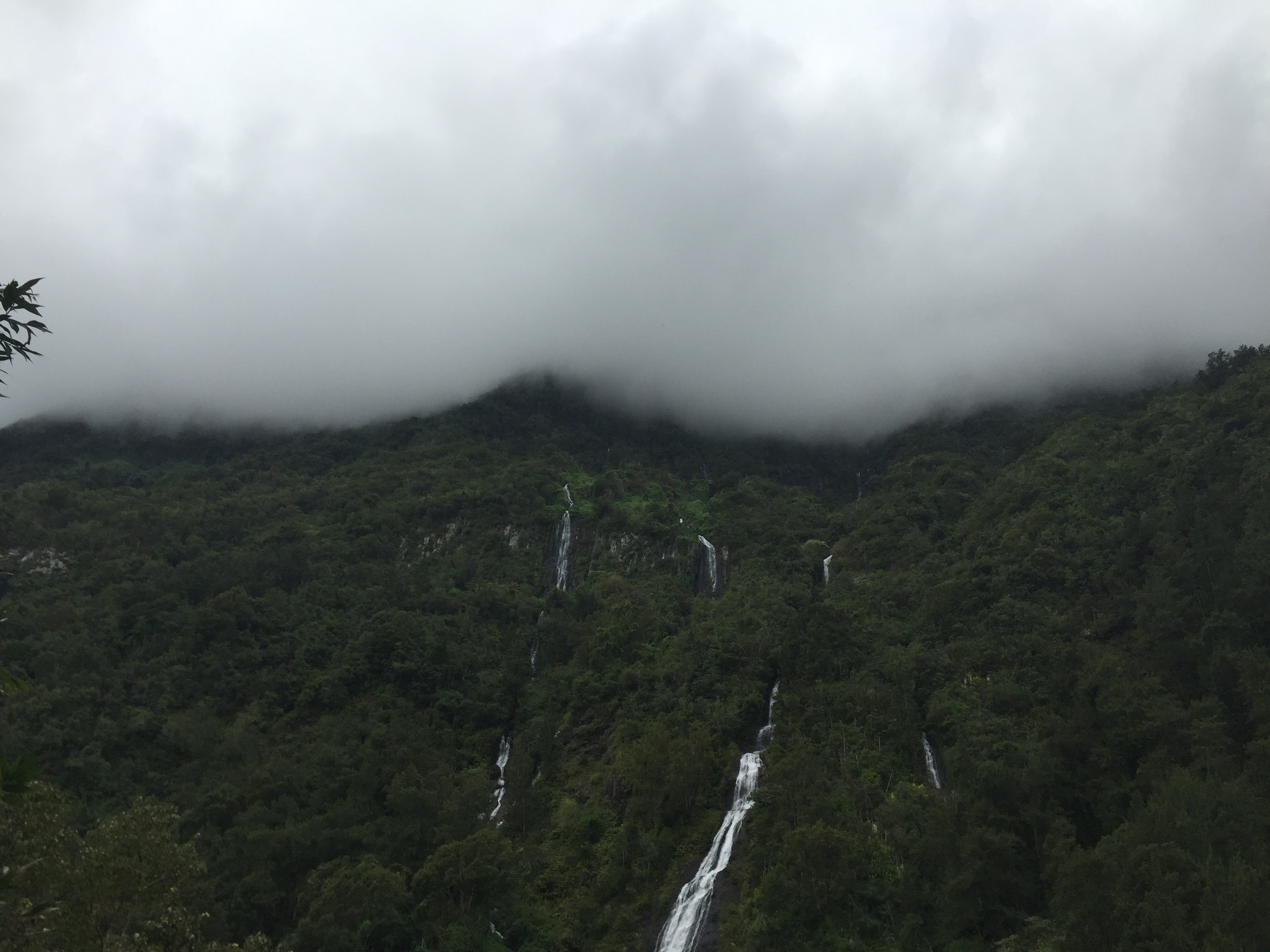 Several waterfalls running down a wooded slope