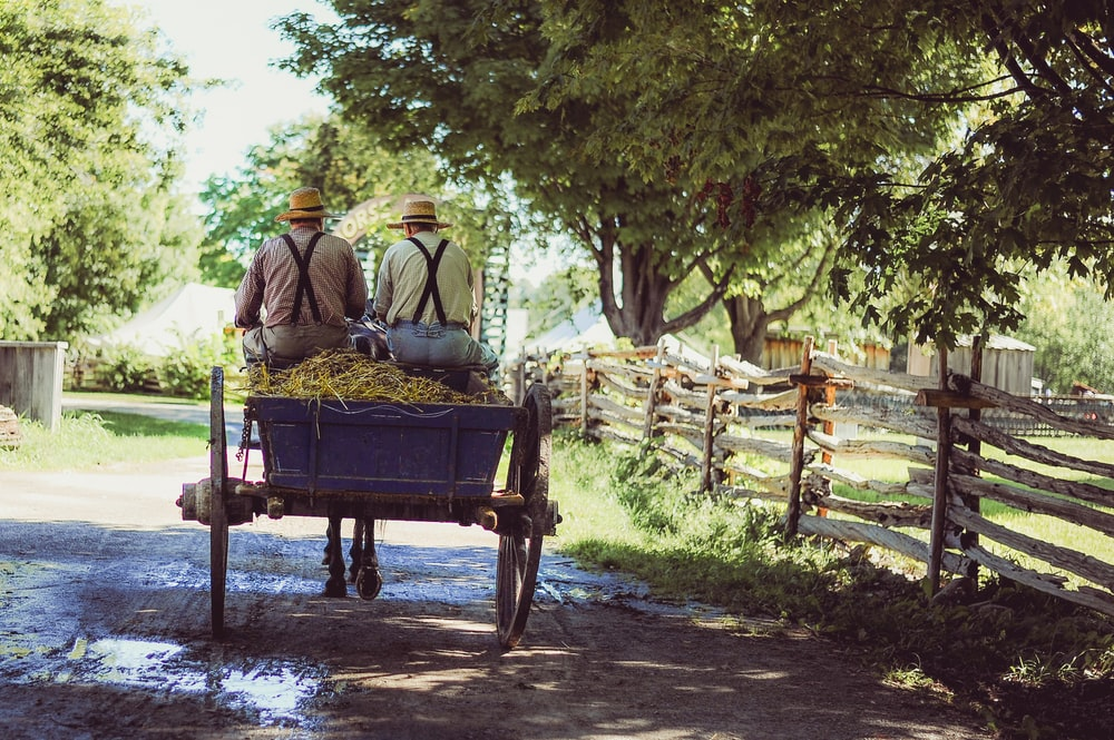 two person riding horse with carriage