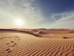 Nizwa - Wahabi Sands