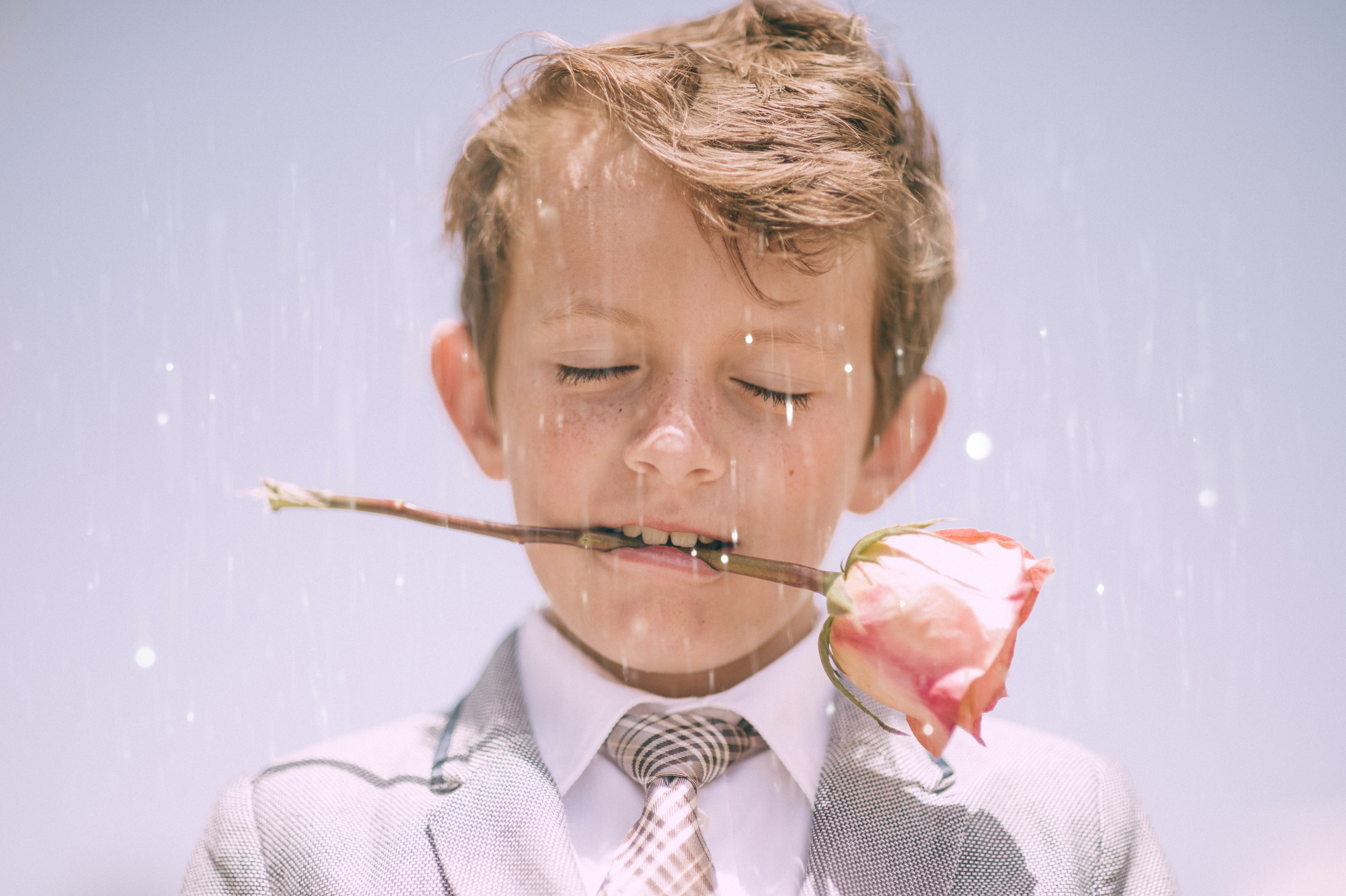 A little boy in a formal suit holding a pink rose between his teeth