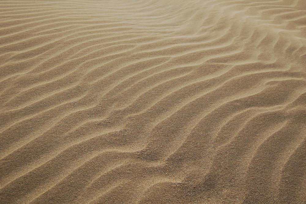 sand dunes during daytime