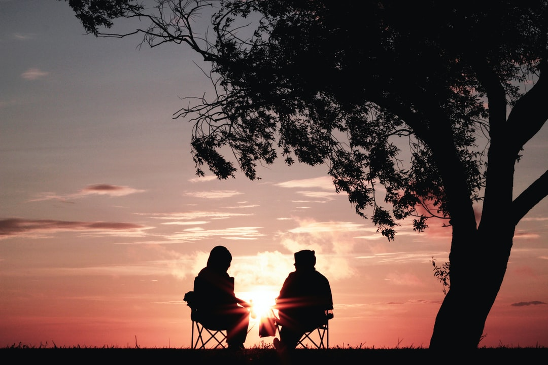 Silhouette of two people in hoodies sitting under a tree and watching a pink sunset