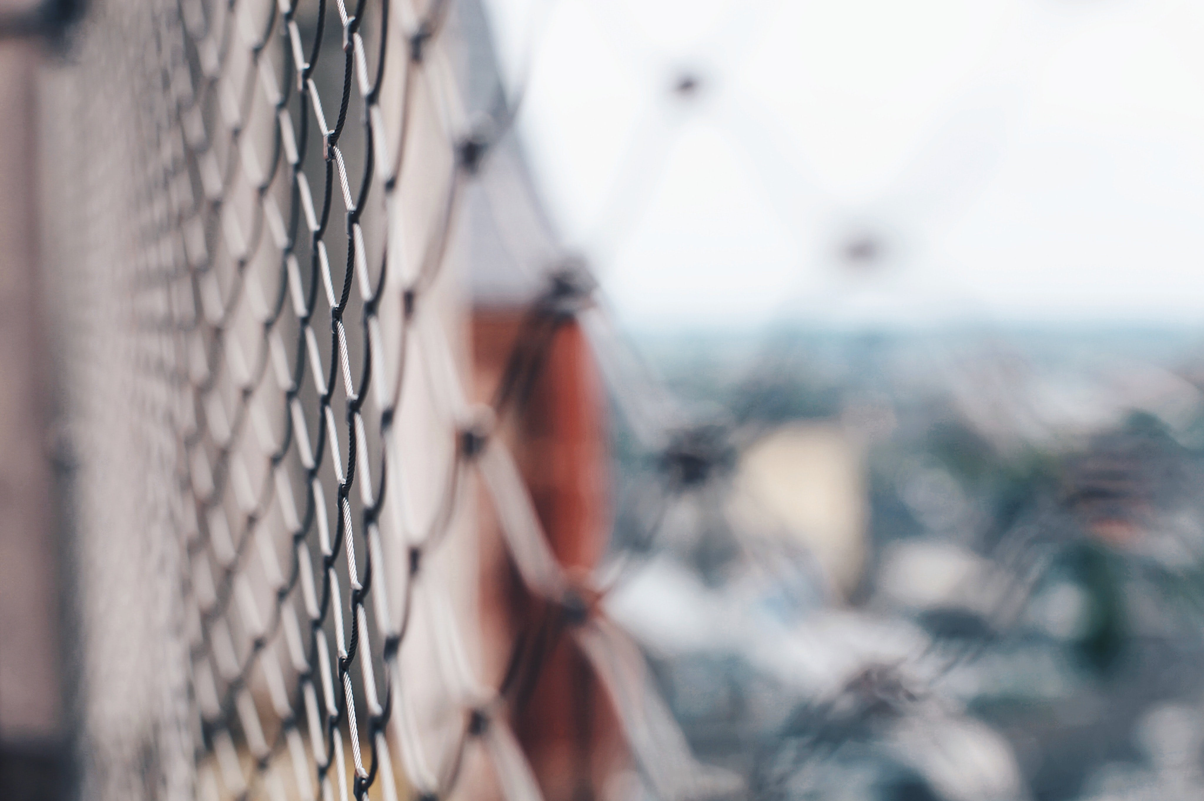 selective focus photography of gray chain-link fence