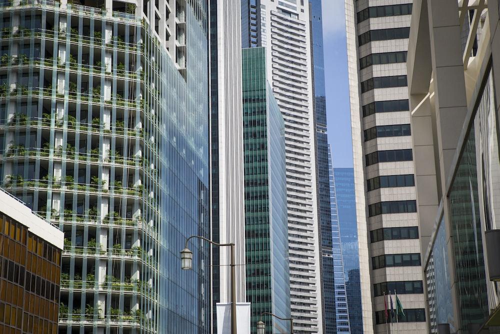assorted buildings