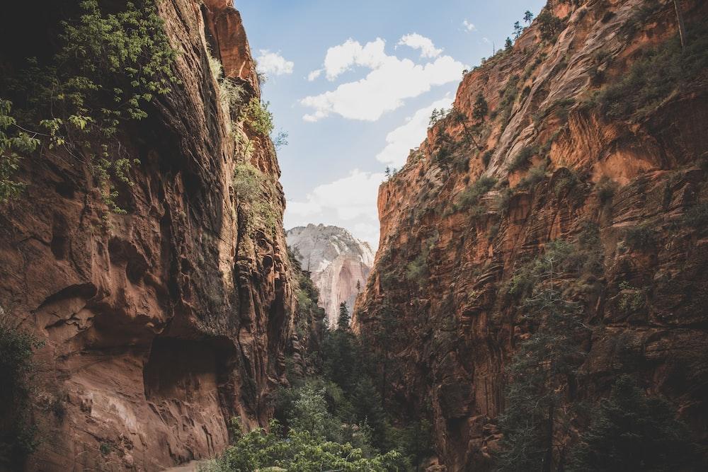 pathway between brown cliffs