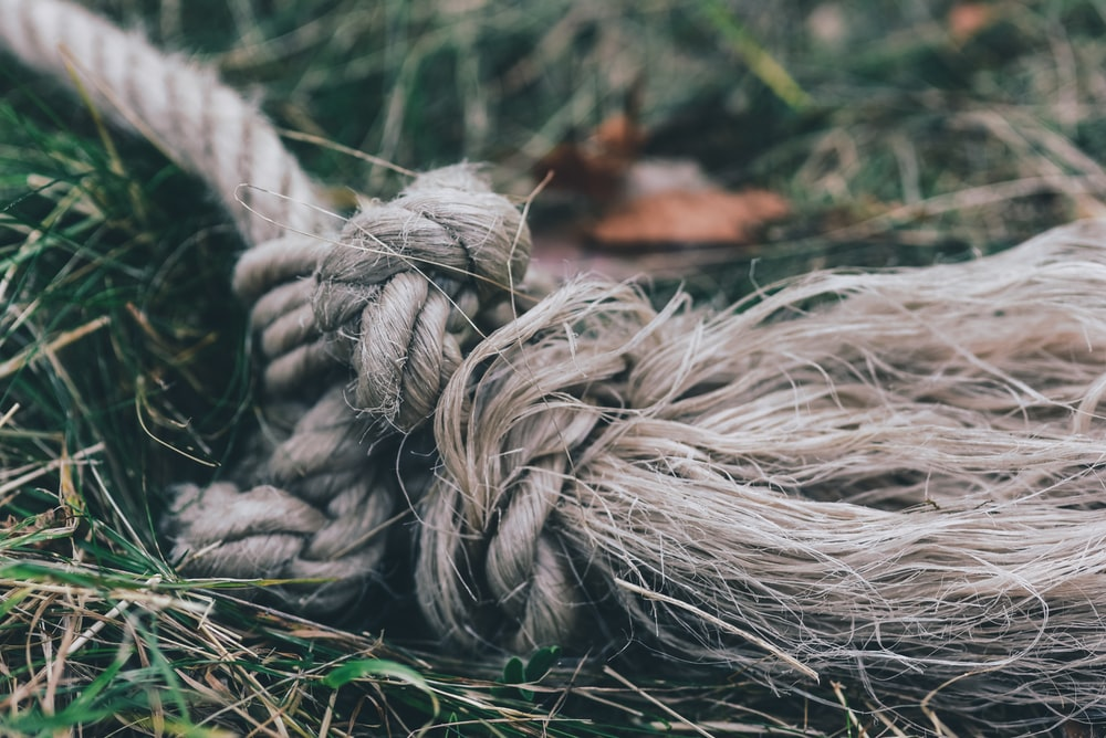 brown rope on grass