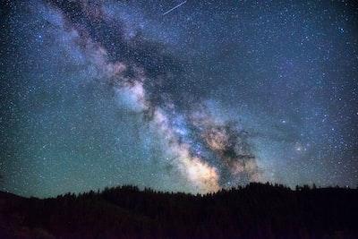 Nebulae over trees