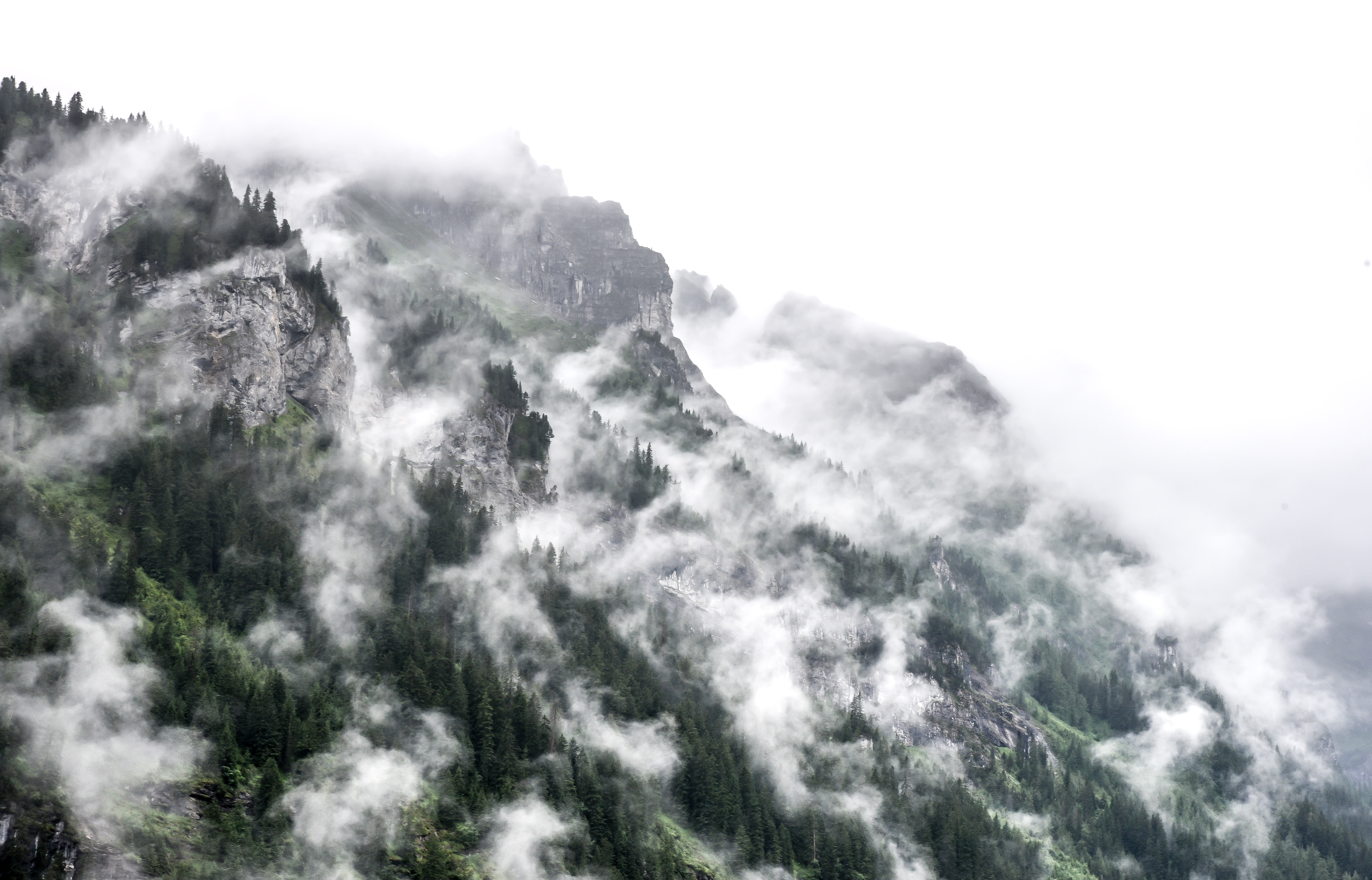 View of the rocky and evergreen mountain side with the fog rising near Mürren