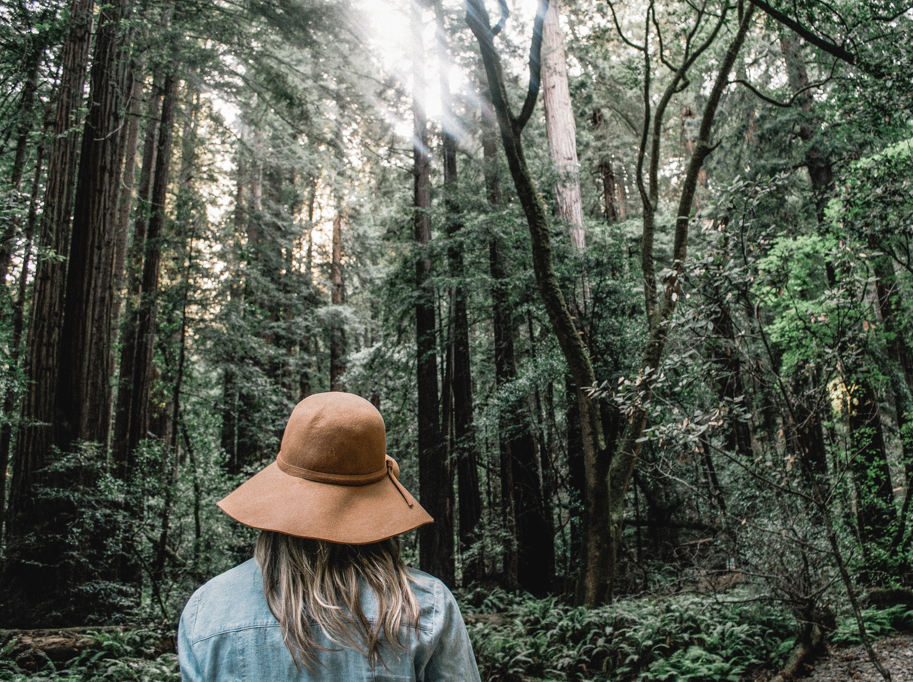 A woman in a hat hiking through a bright forest