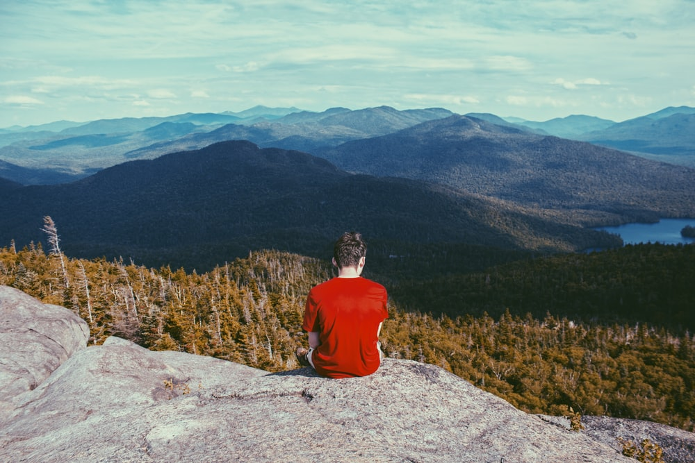man sitting on gray rock formation looking at pine trees during daytime