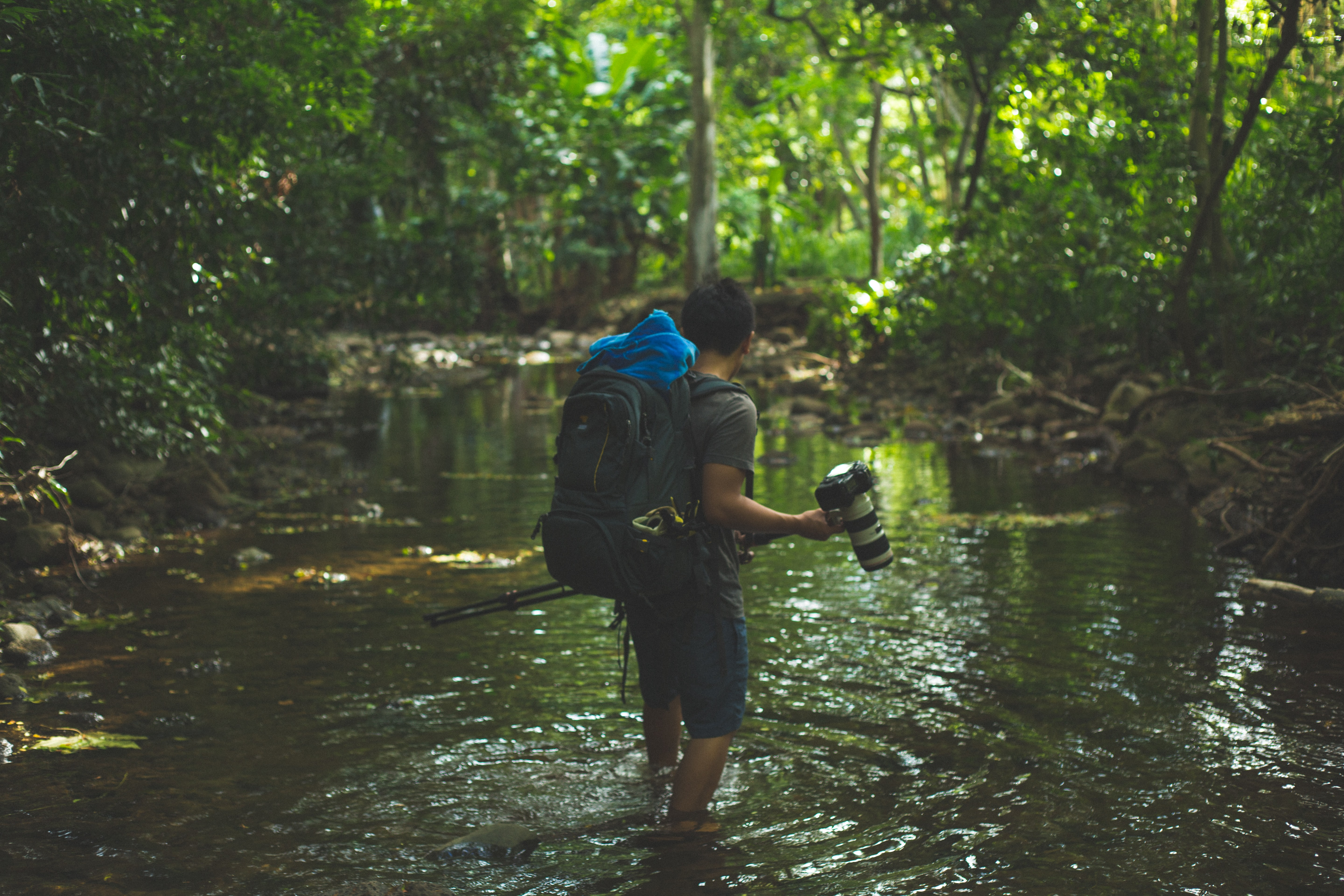A man holding a camera while wading through a river in a forest in Honolua Bay