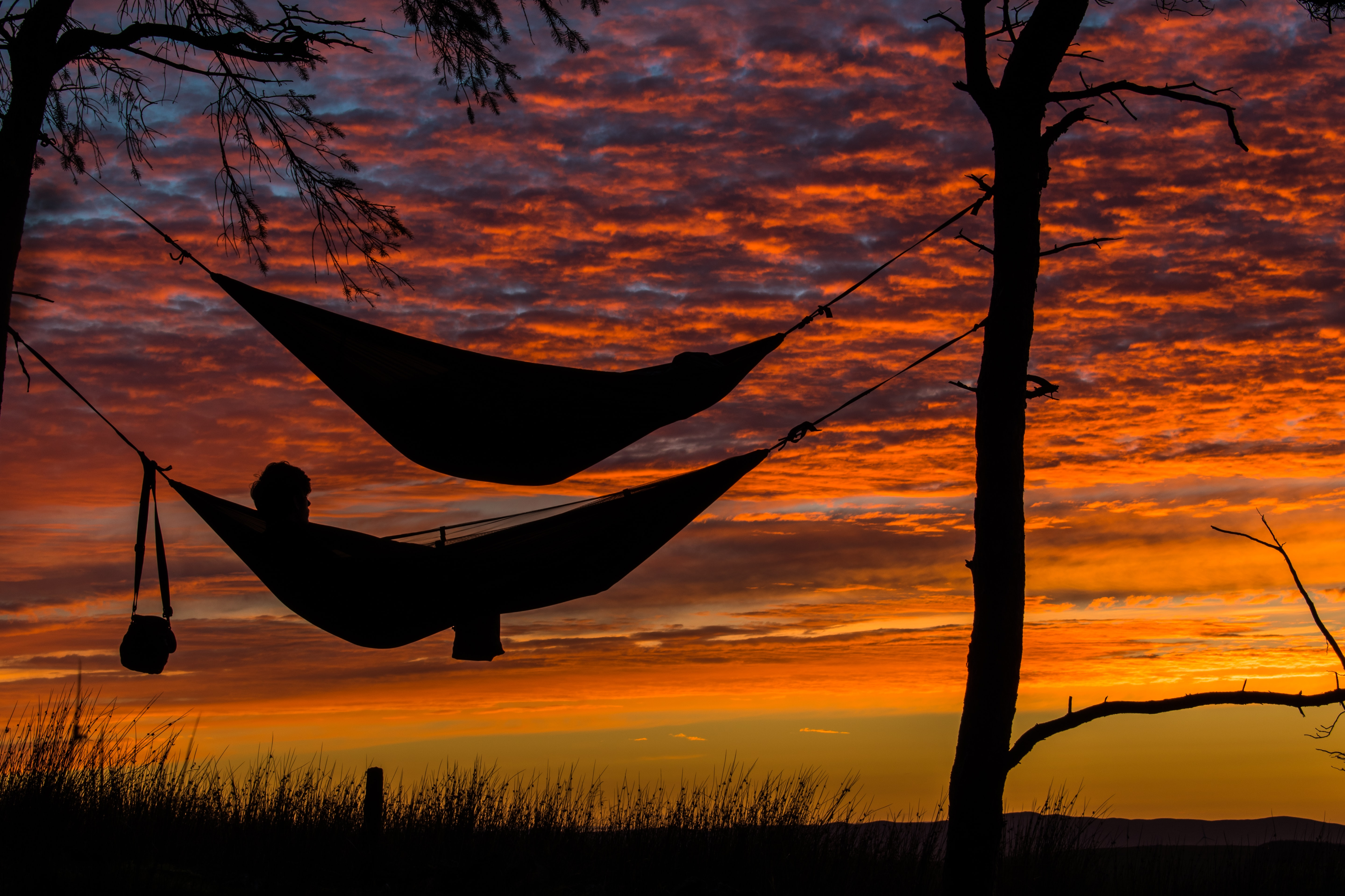 person lying on hammock