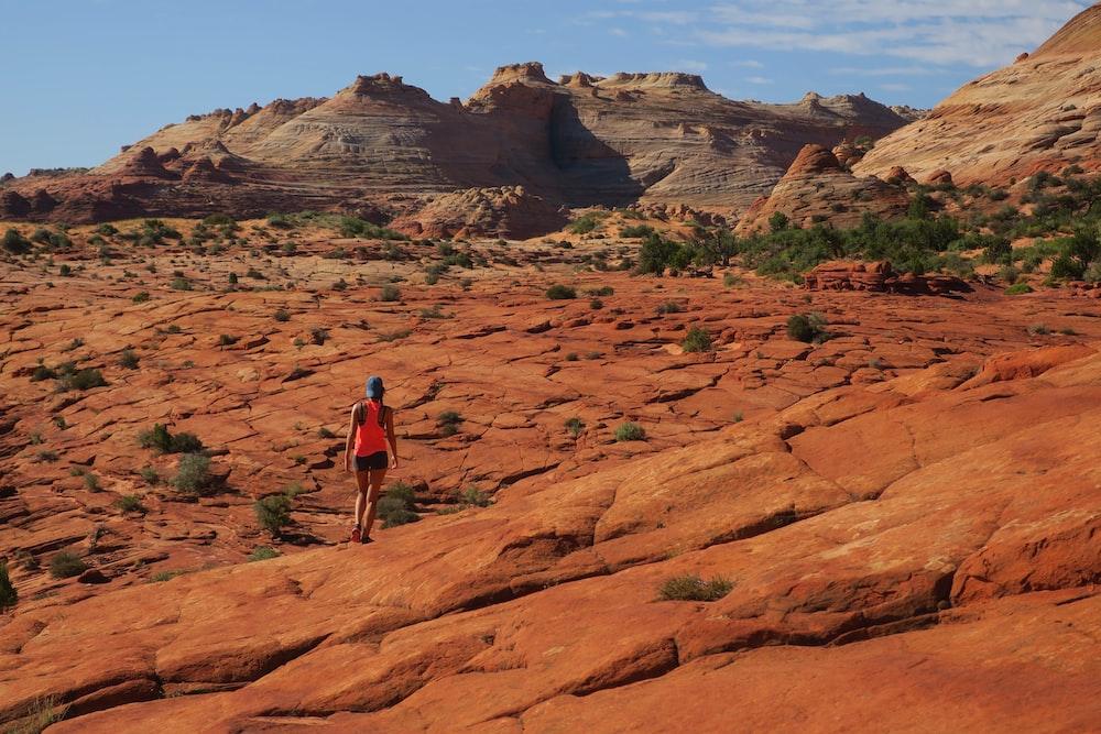 person walking on brown mountain during daytime