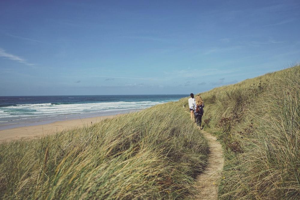 people walking between green grass near shore during daytime