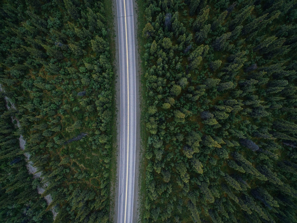 aerial view photography of time-lapse cars on road near trees