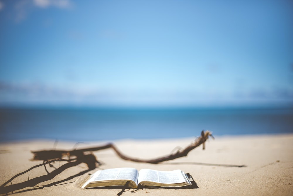 opened book near brown wood branch on sand under blue sky