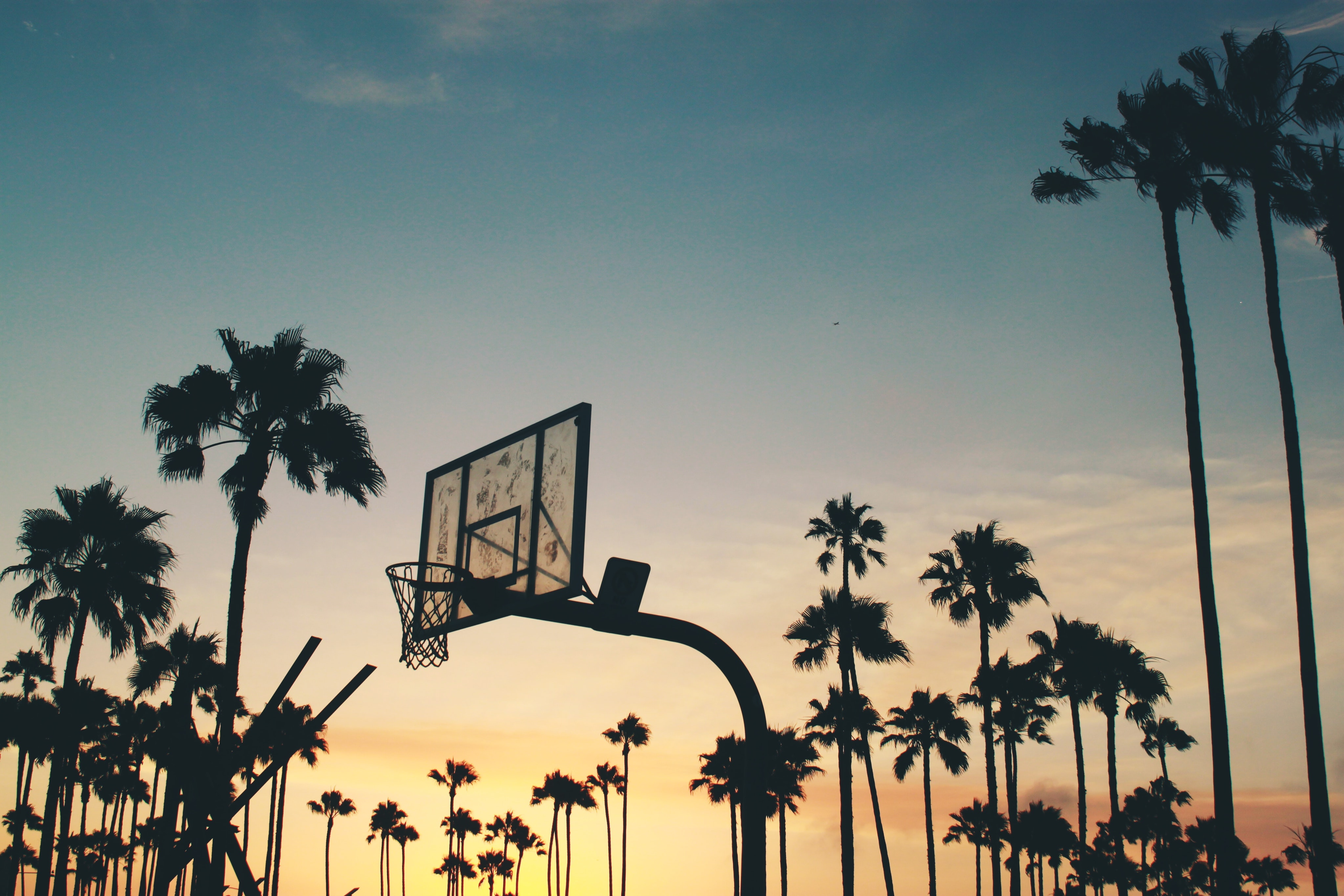 A yellow and blue sunset in Venice, Los Angeles forming silhouettes of a basketball court and numerous palm trees
